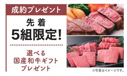 お肉プレゼント